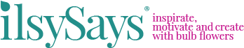 IlsySays Logo