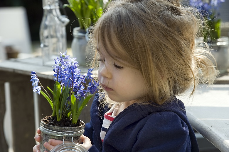 Potted bulbs for instant garden happiness