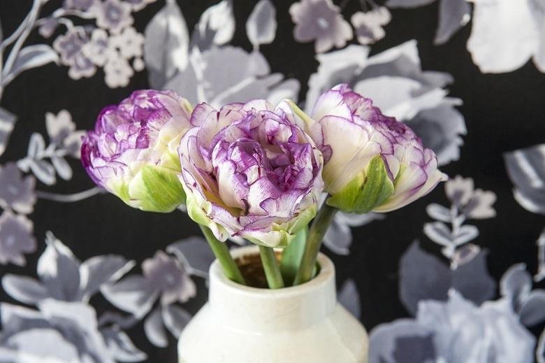 Love & the joys of spring